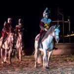Bataille de Castillon – Serge Parinaud (3)