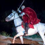 Bataille de Castillon – Serge Parinaud (4)